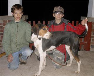 A real boni fide coon hound