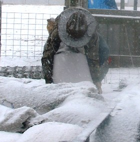 Feed Corn, Winter Snow and Boyhood Farm Work